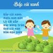 Thơ cho bé :  Bắp cải xanh
