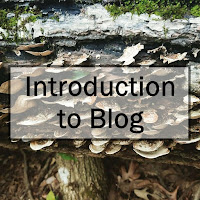 Introduction to Blog
