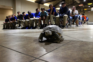 Montgomery Zoo Visits Montgomery Catholic Middle School 1