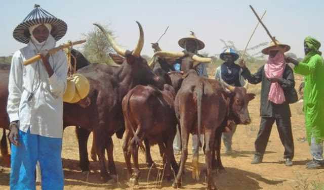Miyetti Allah Explains Why Southern Governors' Ban On Open Grazing Isn't Effective