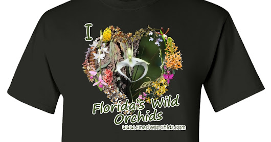 The Florida Native Orchid Blog: Show That You Heart Florida's Native Orchids - Fundraiser