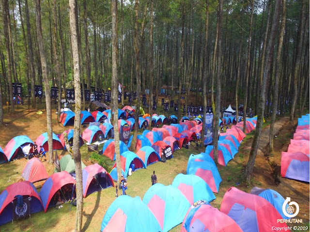Area Gathering, Outing Outbound dan Camping Cikole Green Grass