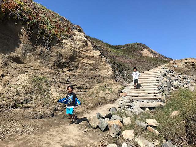 Steps down to the beach at Bodega Bay Trail
