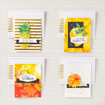 Stampin Up! Paper Pumpkin Box of Sunshine