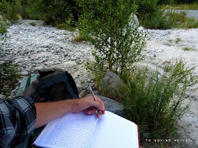Διαβάζοντας και κρατώντας σημειώσεις σ' ένα δάσος στο Κιργιστάν / Reading in a forest of Kyrgyzstan