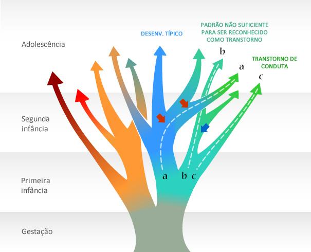 Exemplo cursos de desenvolvimento transtorno do comportamento antissocial, de conduta