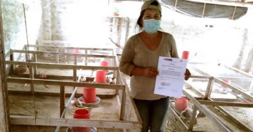 SINEACE: Productores de cuyes del Valle Fortaleza en Áncash certifican sus competencias - www.sineace.gob.pe