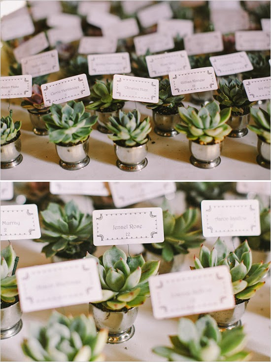 Bridal Trends: Succulent Wedding Favors » Buffalo Indie