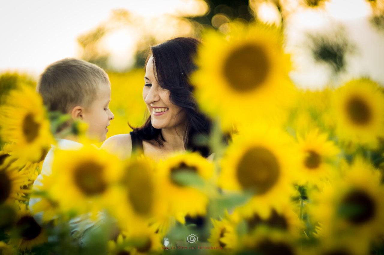 Sesja dziecięca z Tomkiem w Słonecznikach