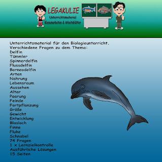 Delfin Klassenarbeit Lernzielkontrolle Arbeitsblatt PDF