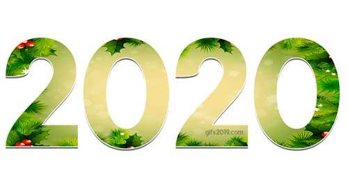 2020 fondo