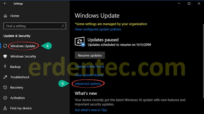Pausing Windows 10 Updates Indefinitely