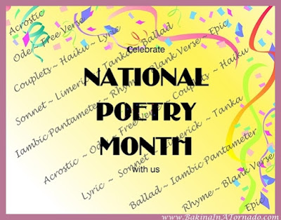 National Poetry Month | There Once Was a Limerick | www.BakingInATornado.com | #poetry #MyGraphics