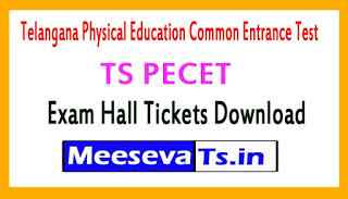 TS PECET Exam Hall Tickets Download