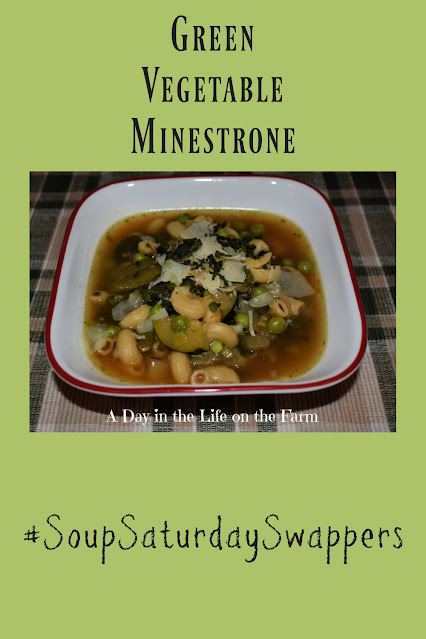 Green Vegetable Minestrone pin
