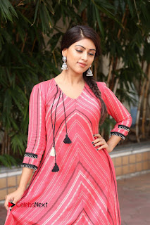 Anu Emmanuel Pictures at Majnu Success Meet ~ Bollywood and South Indian Cinema Actress Exclusive Picture Galleries