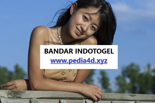 Situs indotogel selalu hadir untuk kalian player