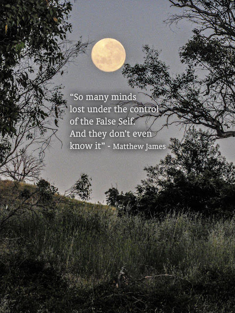 'So many minds lost under the control of the False Self. And they don't even know' - Matthew James
