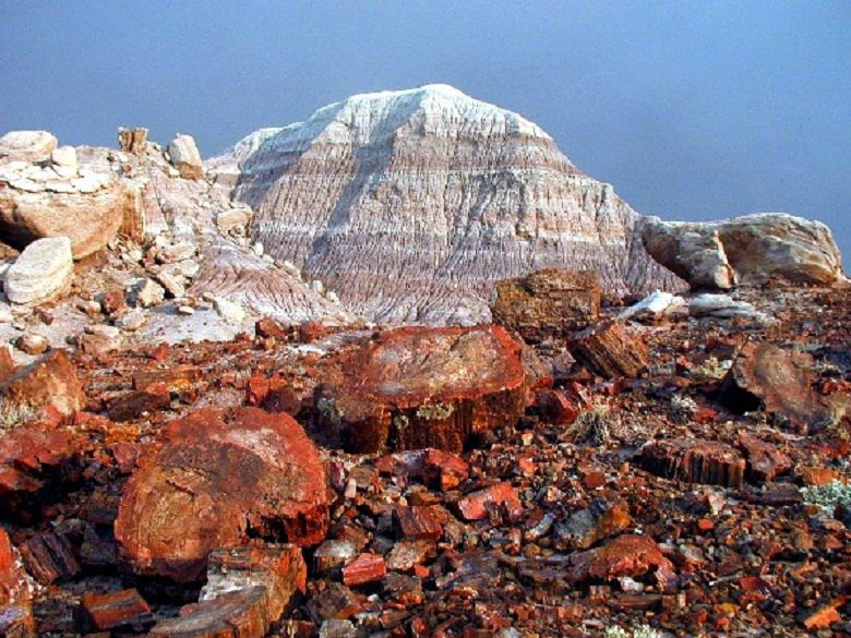 Petrified Forest National Park Navajo and Apache County 2