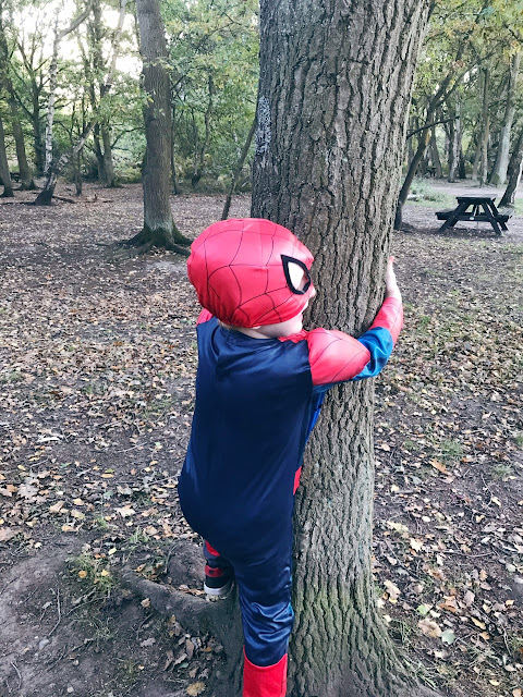 Little boy in a Spider-Man costume trying to climb a tree