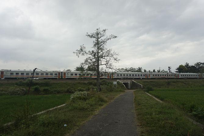 Gerbong kereta di Stasiun Rewulu