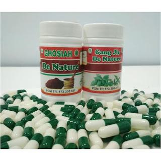 Obat Herbal Sifilis