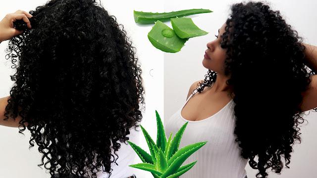 Shampoo caseiro de babosa para crescer o cabelo  manual dos cachos