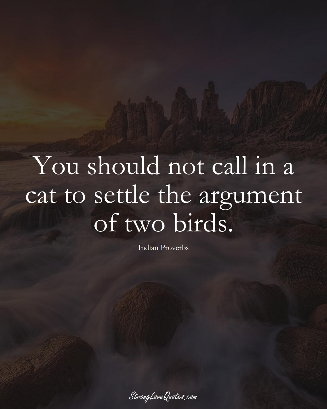You should not call in a cat to settle the argument of two birds. (Indian Sayings);  #AsianSayings