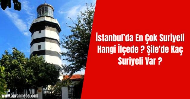 İstanbul'da En Çok Suriyeli Hangi İlçede ? Şile'de Kaç Suriyeli Var ?