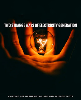 Electric bulb in a hand