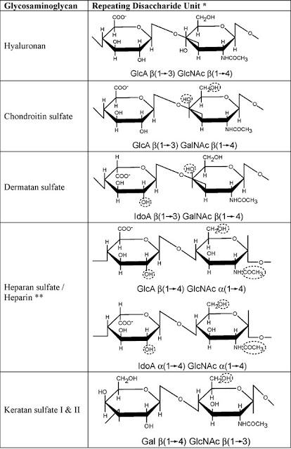Glycosaminoglycan Composition