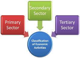 What are Economic Activities? primary, secondary and tertiary