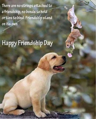 Funny friendship day wallpapers 4