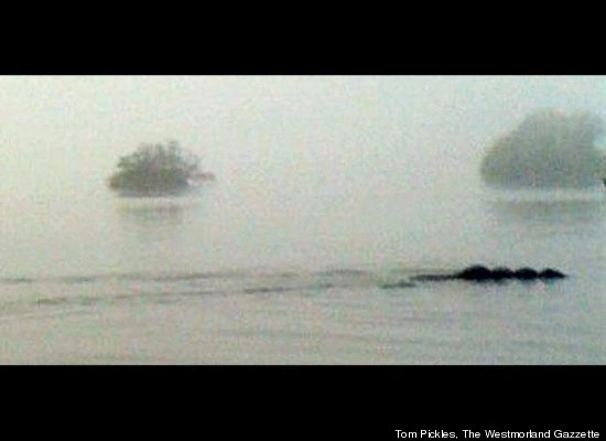 Iceland Loch Ness Monster Real or Robot ~ Danybuzz