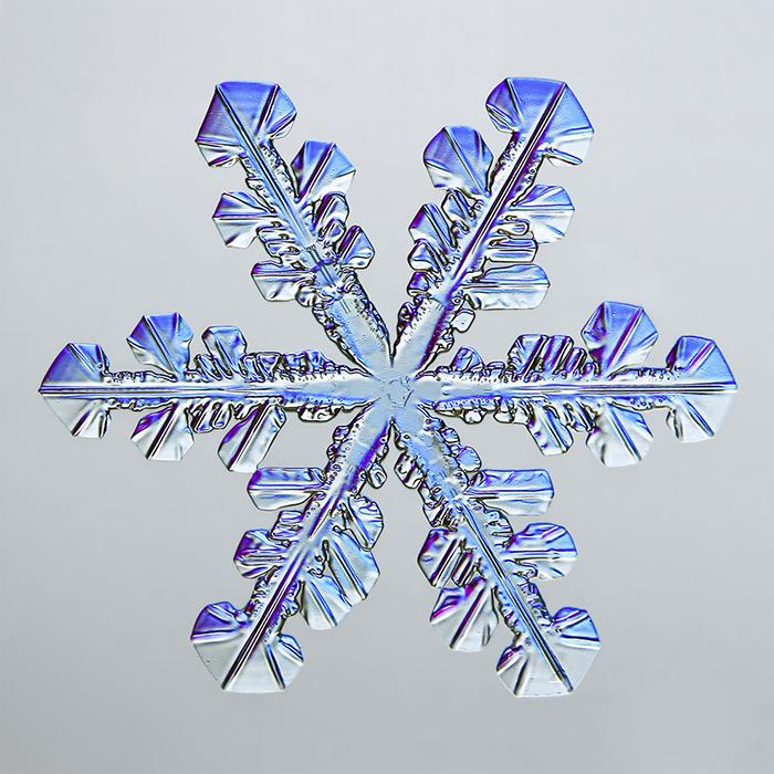 5th place: Snowflake