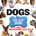Dogs On The Job DVD Pre-Orders Available Now! Releasing on DVD 1/08