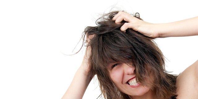 Cara Menghilangkan Kutu Rambut Dan Telurnya Secara Alami Tanpa Merusak Rambut