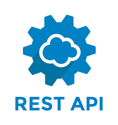 Salesforce Rest API with Example