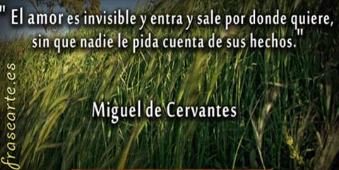 Frases de amor - Miguel de Cervantes