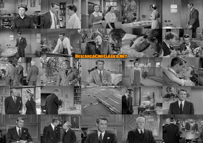 Murmullos en la ciudad (1951) People Will Talk - Descargar - Fotogramas