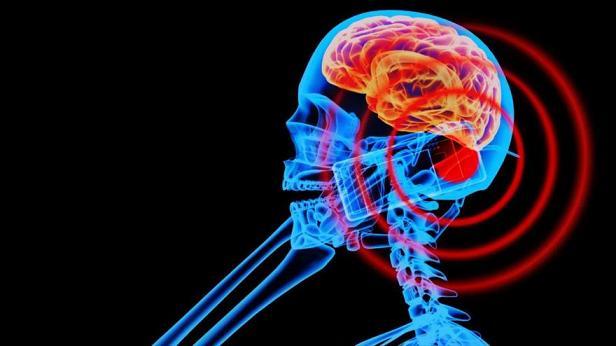 Radiación de los móviles aumenta incidencia de cáncer