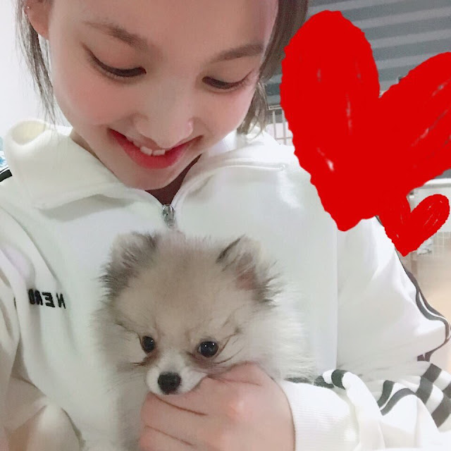 Twice Nayeon and Kookeu