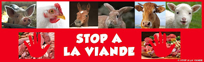 https://www.facebook.com/groups/STOP.VIANDE