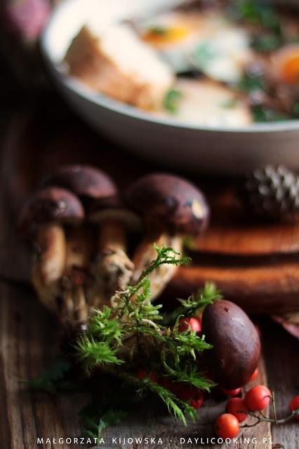 leśne grzyby, co zrobić z grzybami, przepis na świeże grzyby, daylicooking