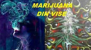 Marijuana din vise | Interpretarea şi semnificaţia viselor
