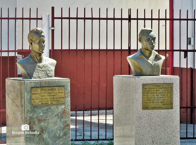 Vista dos Bustos de Clóvis e Pelé - Estádio Conde Rodolfo Crespi - Mooca - São Paulo