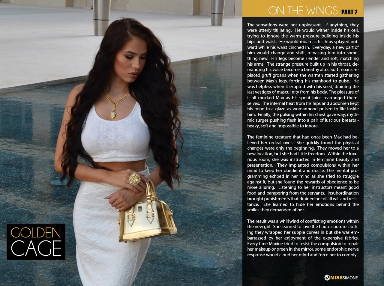 The Modern Goddess TG Caption Blog: Hostess   The Evening