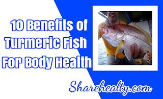 10 Benefits of Turmeric Fish for Body Health