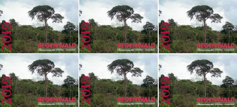 Nachhaltiger Regenwaldkalender verschenken
