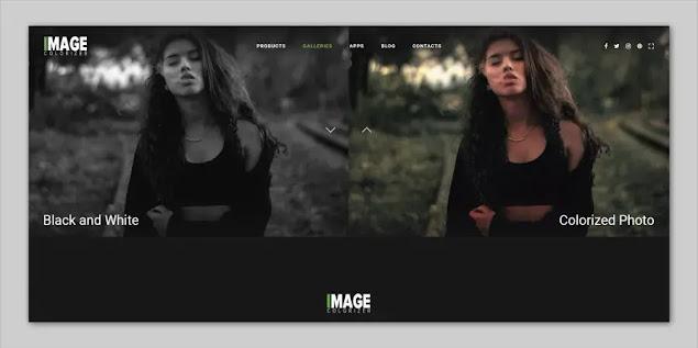 Image Colorizer
